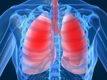 Blood:低用力呼气量可引起镰状细胞贫血症的早期死亡?